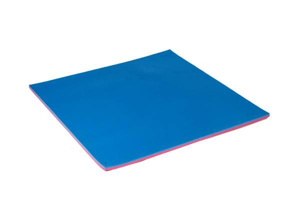 Taekwondo Matte 100 x 100 x 2cm | Bodenmatte